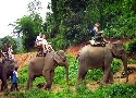 فیل سواری Kok Chang Safari Elephant Trekking